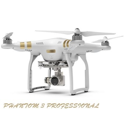 Bargain - USD $999 + Shipping $29.29 - DJI Phantom 3 Professional GPS App FPV Remote Control Quadcopter with 4K HD Camera RTF UFO @ GearBest.com